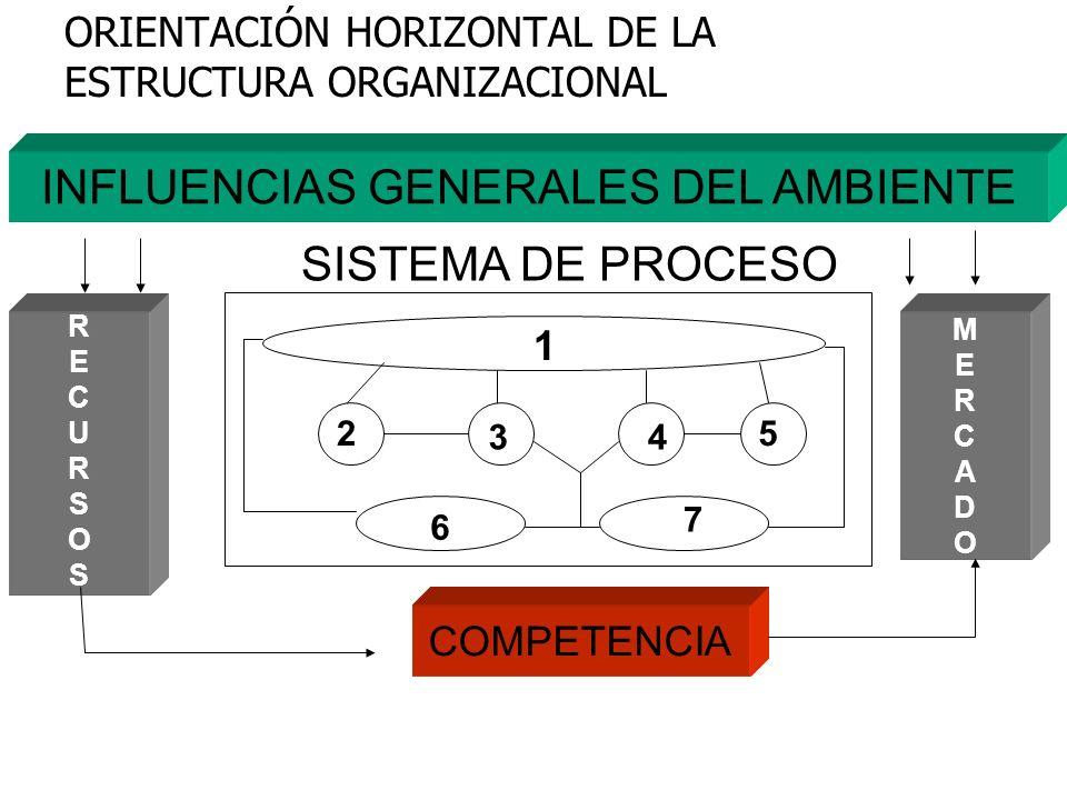 ORIENTACIÓN HORIZONTAL DE LA ESTRUCTURA ORGANIZACIONAL