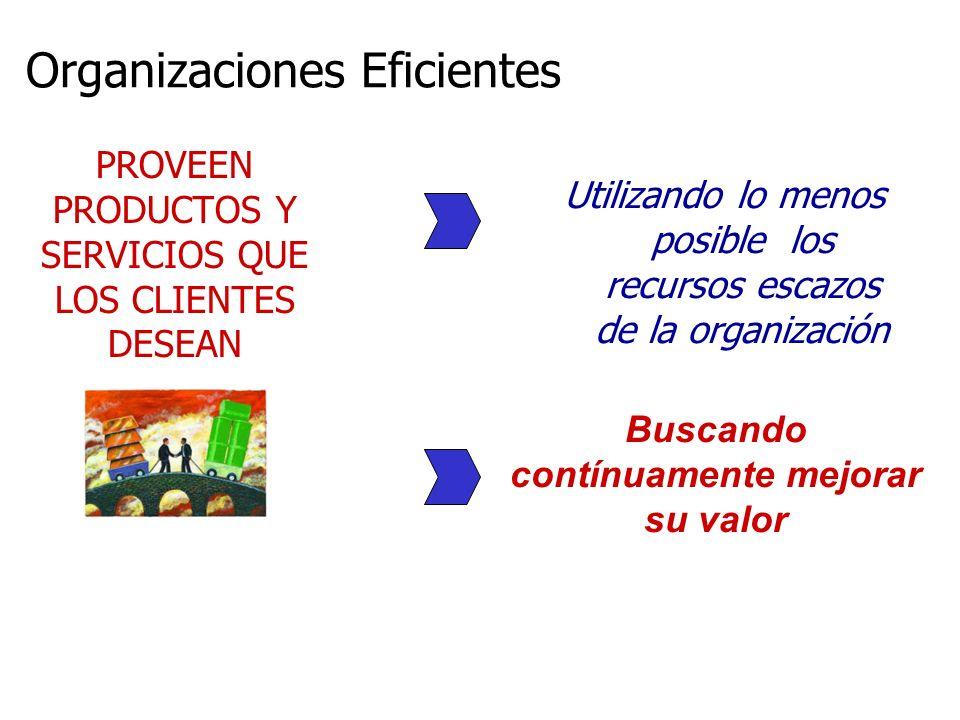 Organizaciones Eficientes