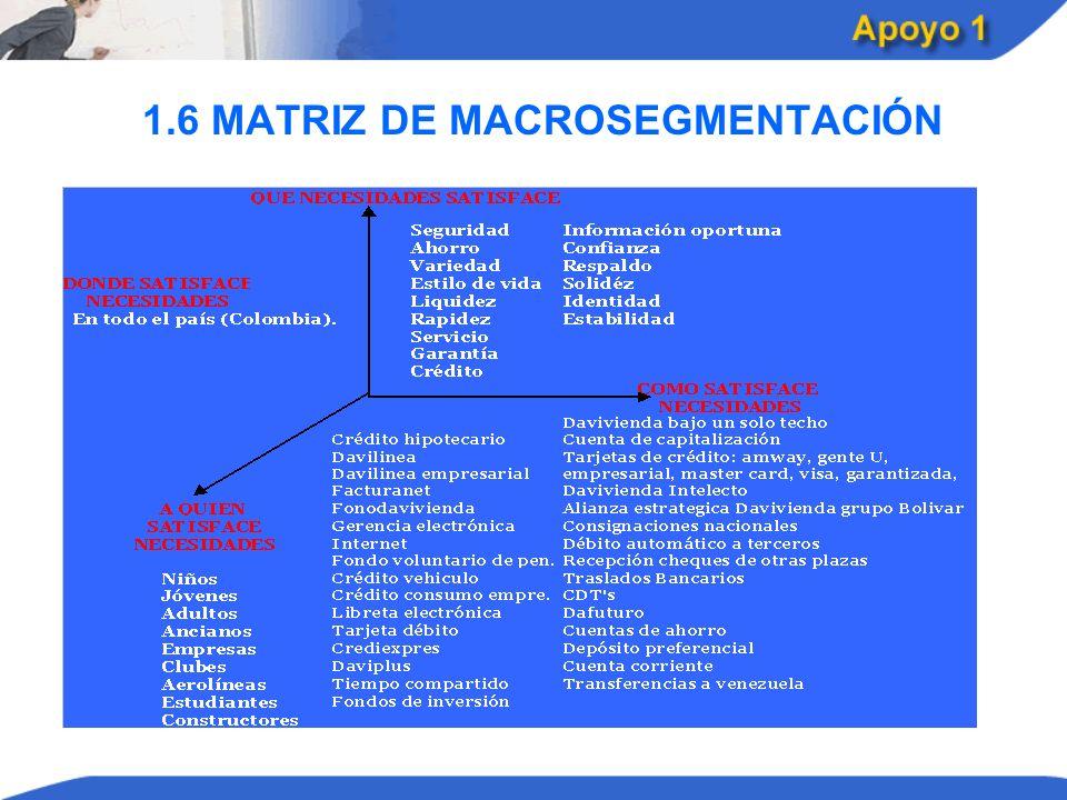 1.6 MATRIZ DE MACROSEGMENTACIÓN