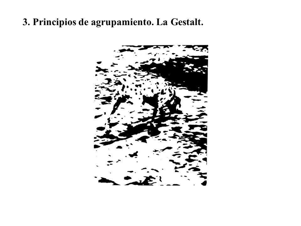 3. Principios de agrupamiento. La Gestalt.