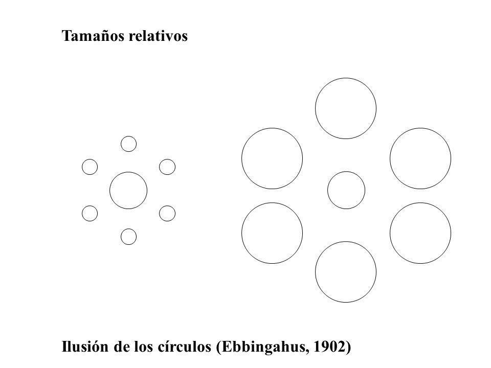 Tamaños relativos Ilusión de los círculos (Ebbingahus, 1902)