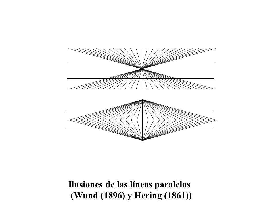 Ilusiones de las líneas paralelas