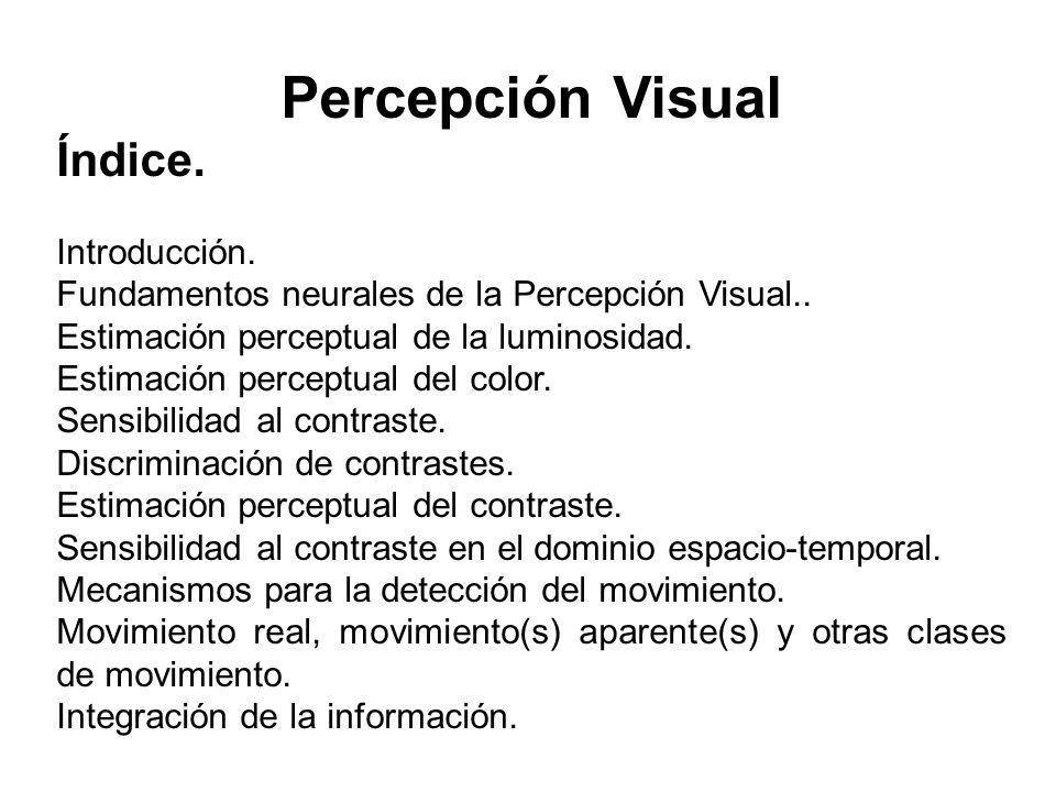 Percepción Visual Índice. Introducción.