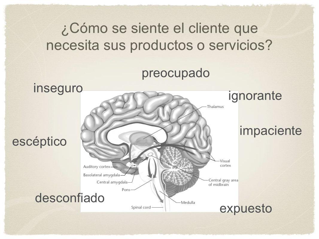 ¿Cómo se siente el cliente que necesita sus productos o servicios
