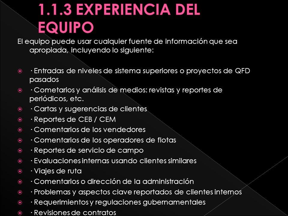 1.1.3 EXPERIENCIA DEL EQUIPO