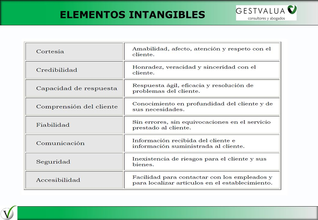 ELEMENTOS INTANGIBLES