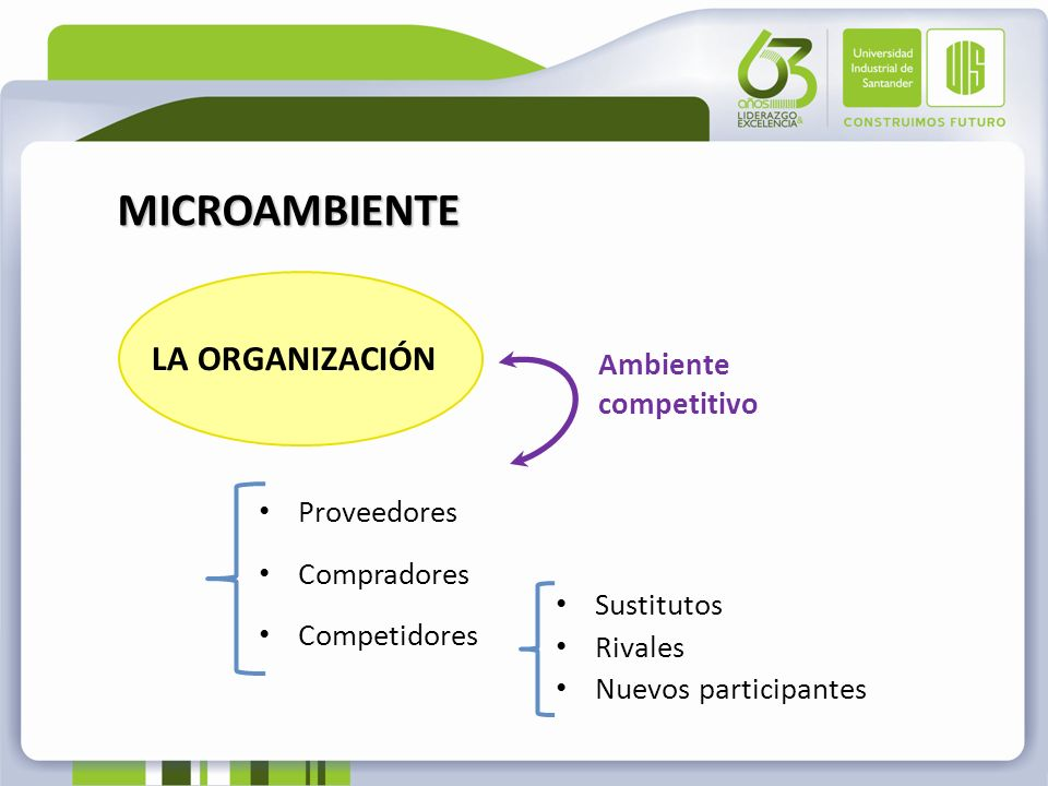 MICROAMBIENTE LA ORGANIZACIÓN Ambiente competitivo Proveedores