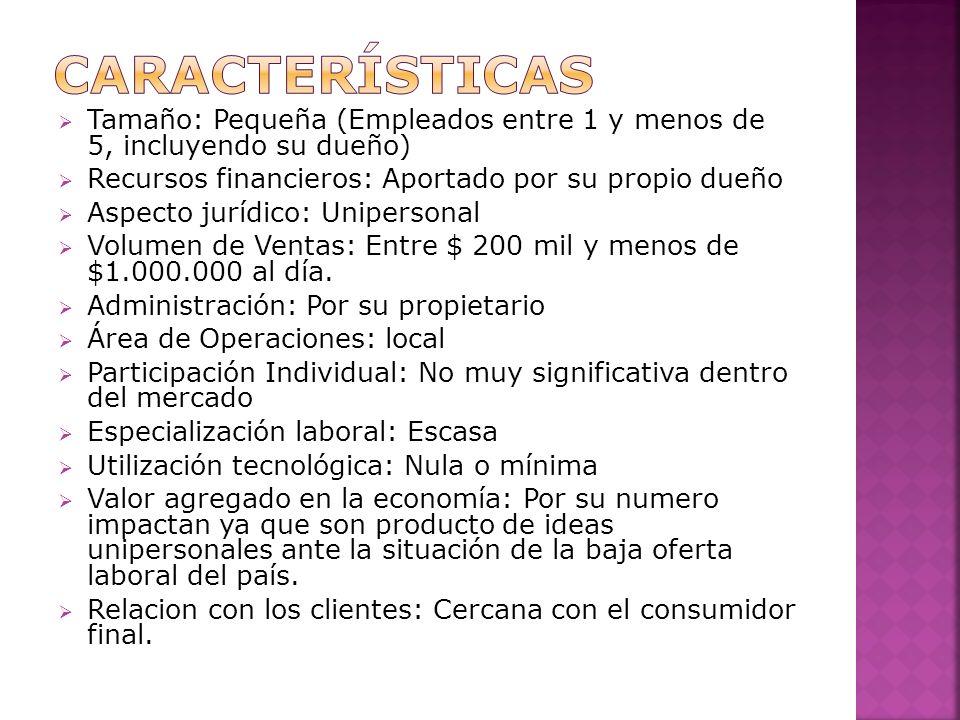 características Tamaño: Pequeña (Empleados entre 1 y menos de 5, incluyendo su dueño) Recursos financieros: Aportado por su propio dueño.