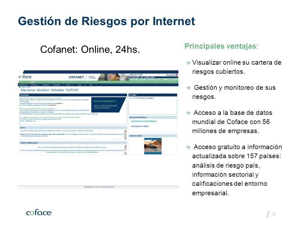 Gestión de Riesgos por Internet