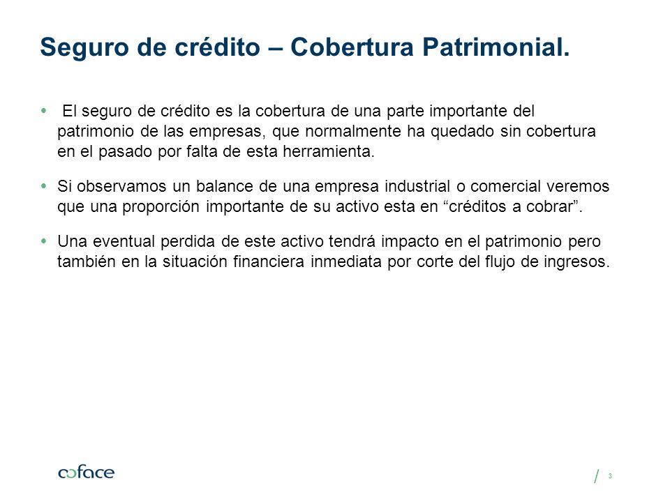 Seguro de crédito – Cobertura Patrimonial.