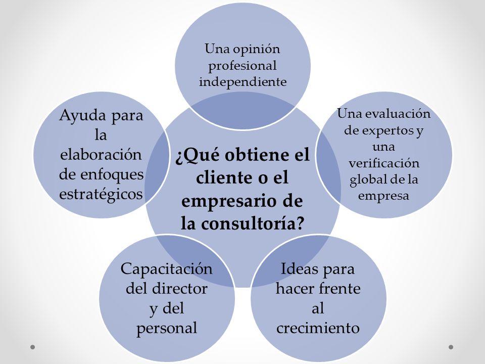 ¿Qué obtiene el cliente o el empresario de la consultoría