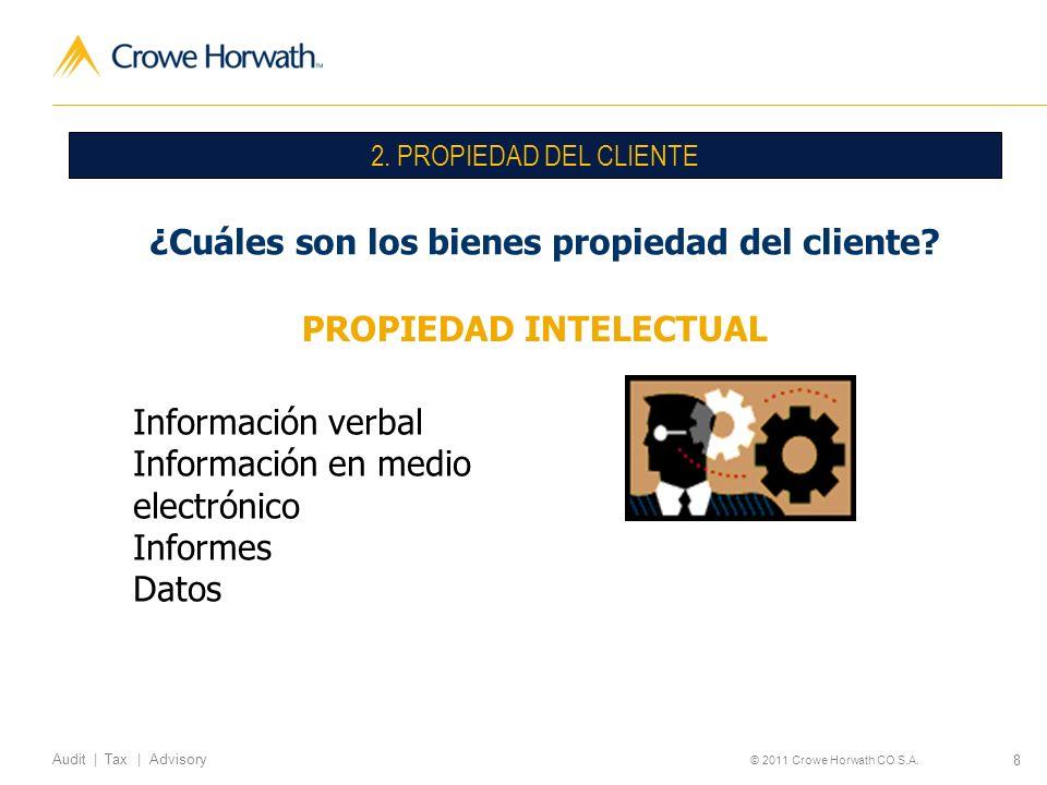 ¿Cuáles son los bienes propiedad del cliente PROPIEDAD INTELECTUAL