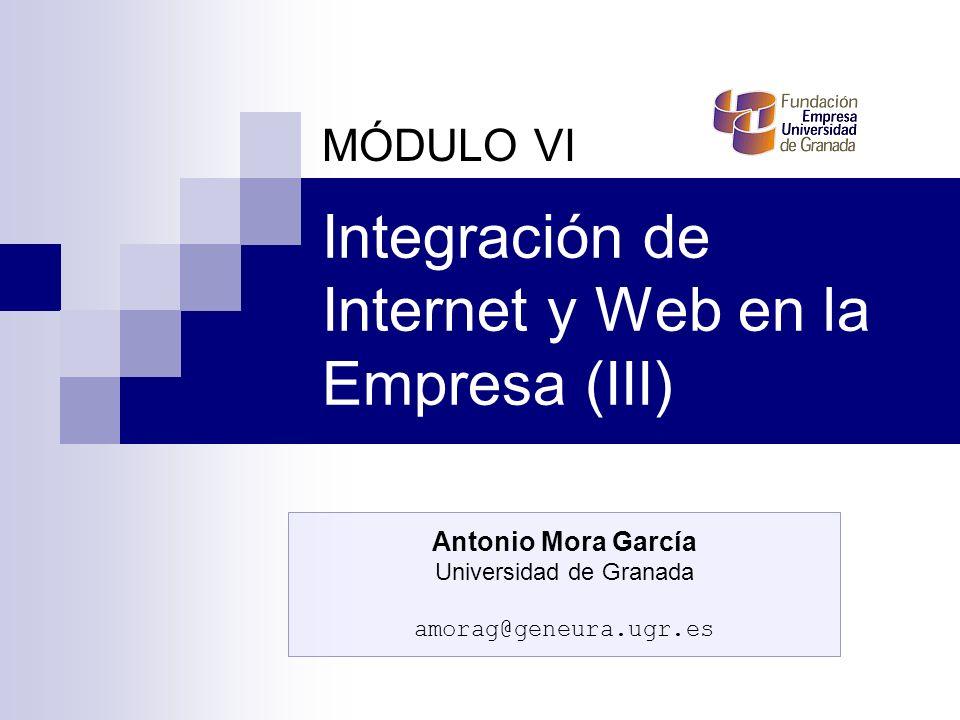 Integración de Internet y Web en la Empresa (III)