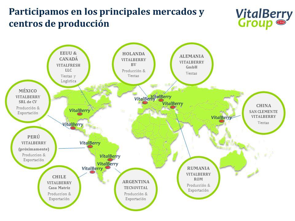 Participamos en los principales mercados y centros de producción