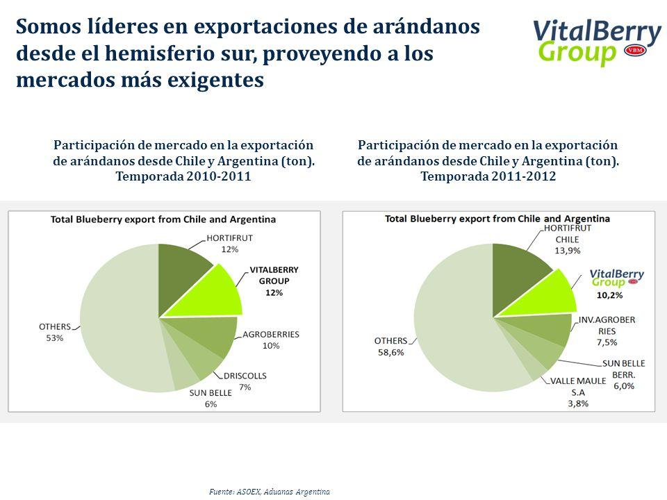 Somos líderes en exportaciones de arándanos desde el hemisferio sur, proveyendo a los mercados más exigentes