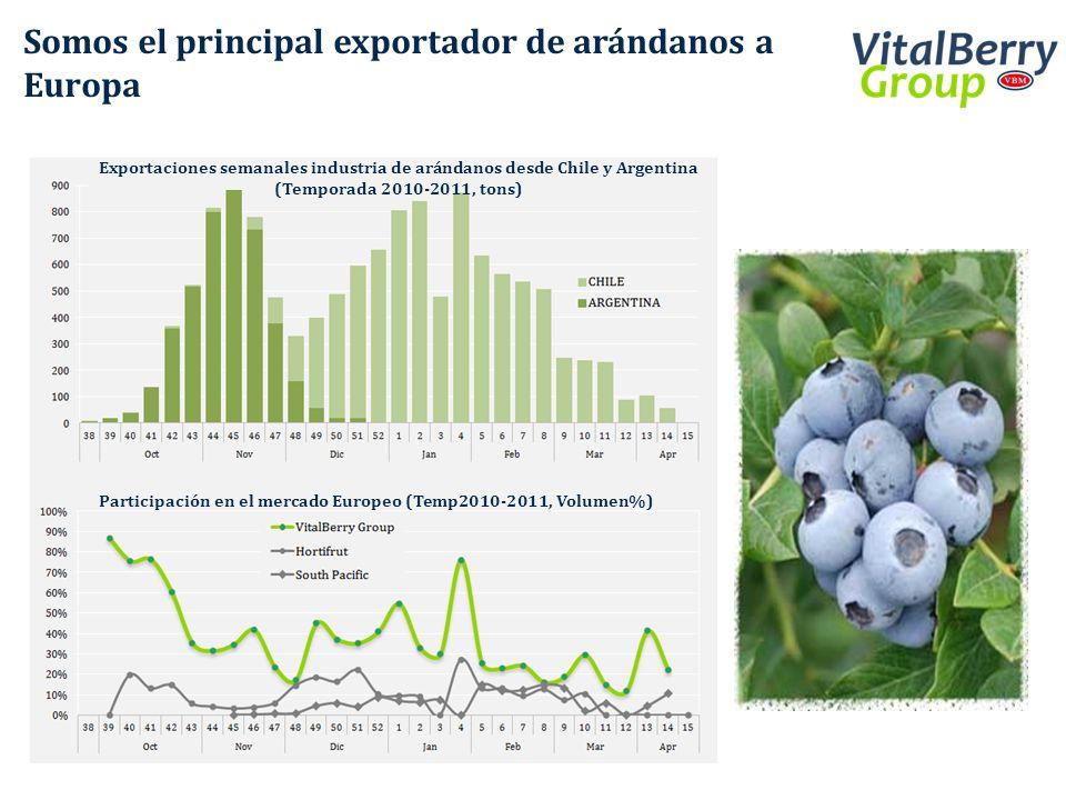 Somos el principal exportador de arándanos a Europa