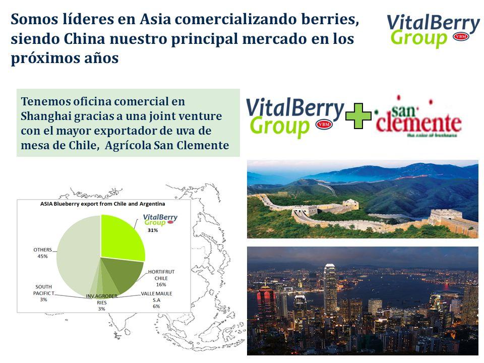 Somos líderes en Asia comercializando berries, siendo China nuestro principal mercado en los próximos años