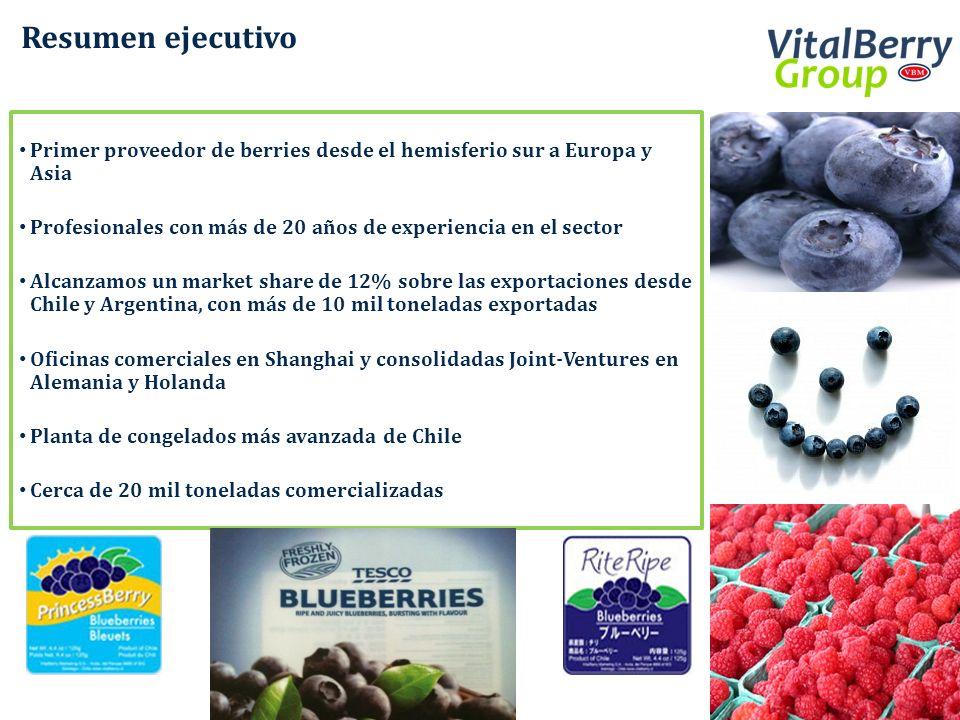 Resumen ejecutivo Primer proveedor de berries desde el hemisferio sur a Europa y Asia. Profesionales con más de 20 años de experiencia en el sector.