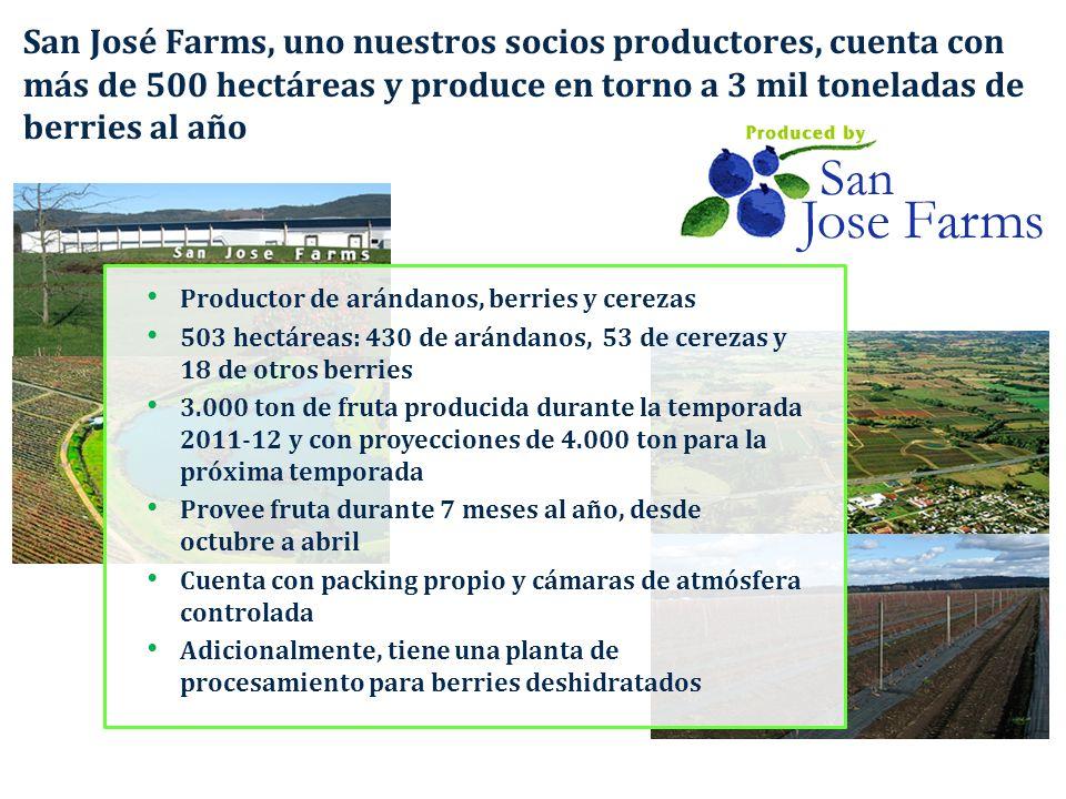 San José Farms, uno nuestros socios productores, cuenta con más de 500 hectáreas y produce en torno a 3 mil toneladas de berries al año