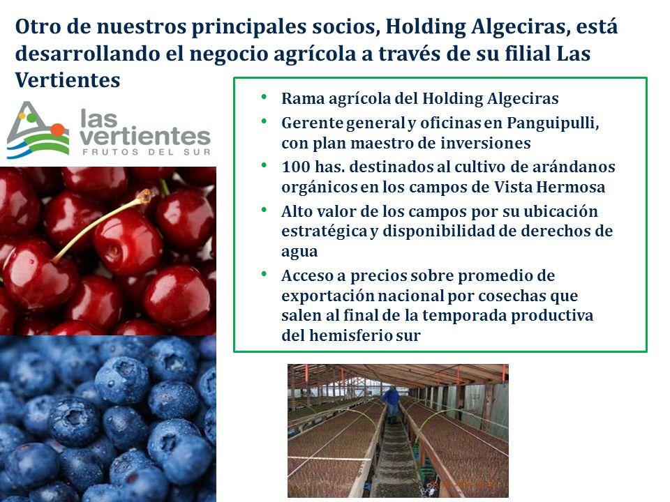 Otro de nuestros principales socios, Holding Algeciras, está desarrollando el negocio agrícola a través de su filial Las Vertientes