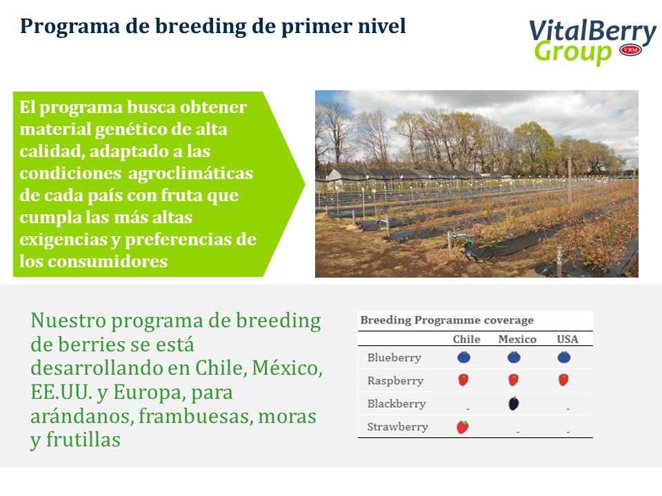 Programa de breeding de primer nivel