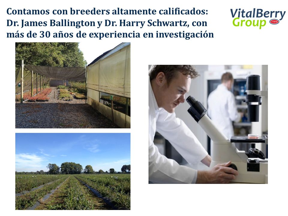 Contamos con breeders altamente calificados: Dr. James Ballington y Dr