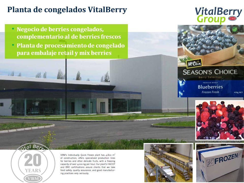 Planta de congelados VitalBerry