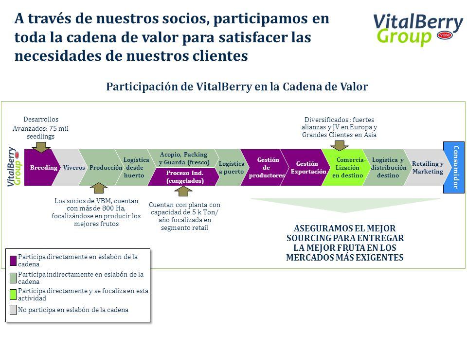 Participación de VitalBerry en la Cadena de Valor