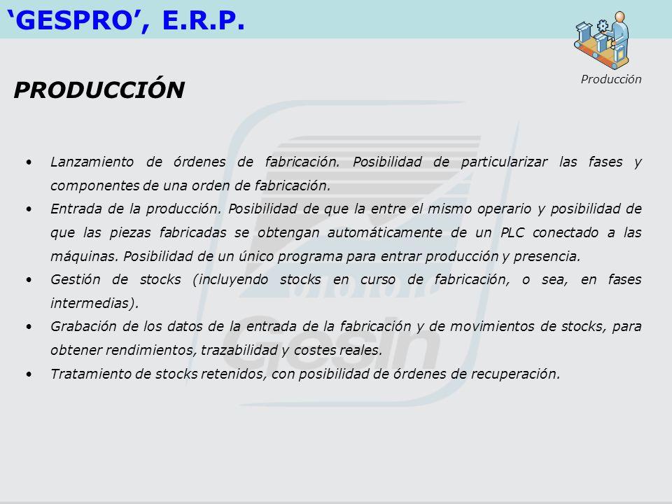 'GESPRO', E.R.P. PRODUCCIÓN