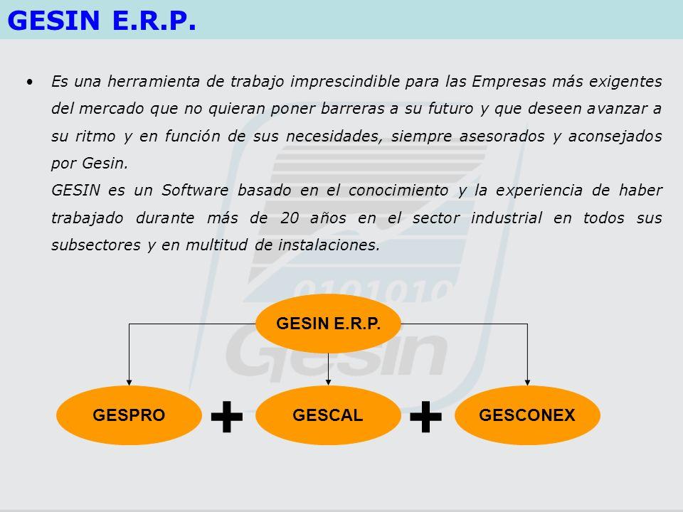 + + GESIN E.R.P. GESIN E.R.P. GESPRO GESCAL GESCONEX