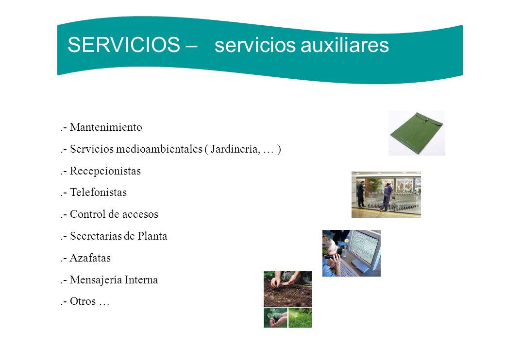 SERVICIOS – servicios auxiliares