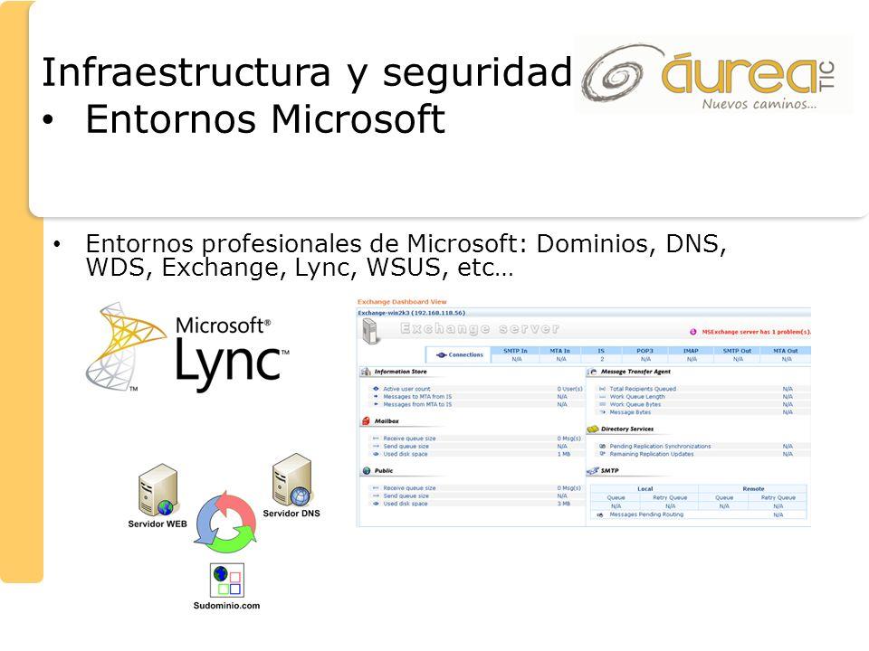 Infraestructura y seguridad Entornos Microsoft