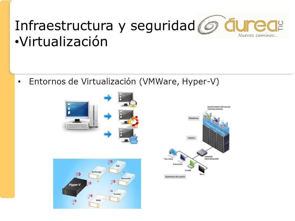 Infraestructura y seguridad Virtualización