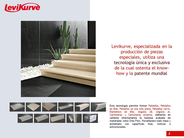 Levikurve, especializada en la producción de piezas especiales, utiliza una tecnología única y exclusiva de la cual ostenta el know-how y la patente mundial