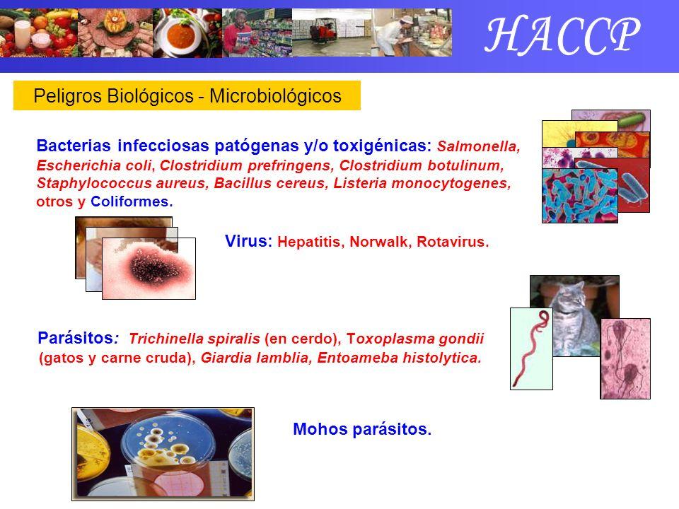 HACCP Peligros Biológicos - Microbiológicos