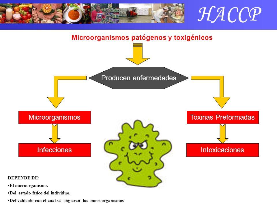 Microorganismos patógenos y toxigénicos