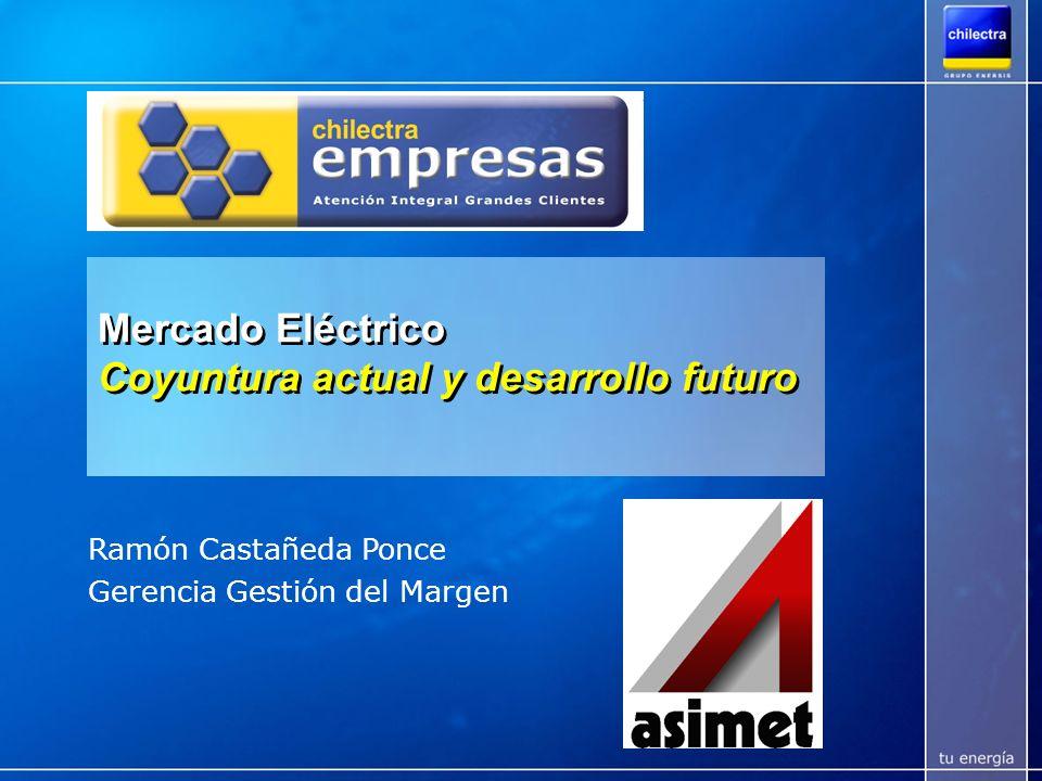 Mercado Eléctrico Coyuntura actual y desarrollo futuro