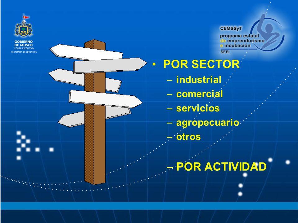 POR SECTOR POR ACTIVIDAD industrial comercial servicios agropecuario