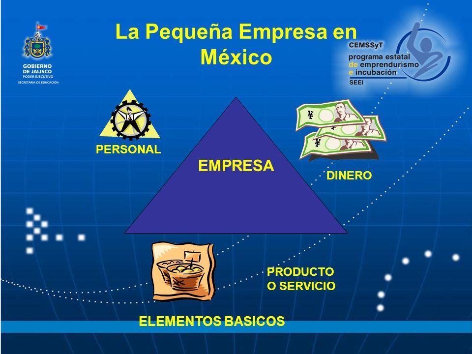 La Pequeña Empresa en México