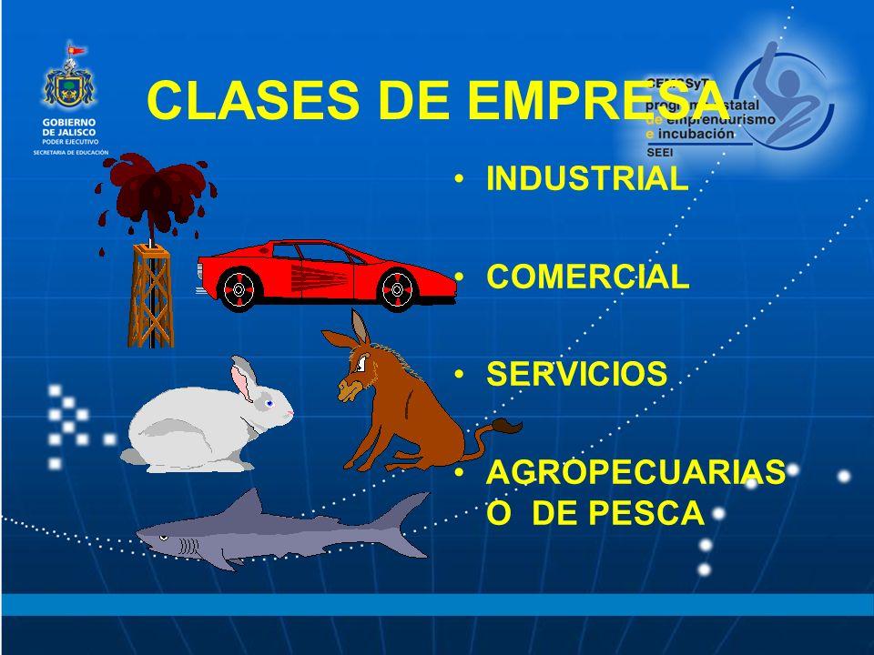 CLASES DE EMPRESA INDUSTRIAL COMERCIAL SERVICIOS