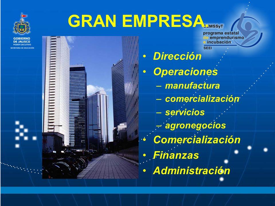 GRAN EMPRESA. Dirección Operaciones Comercialización Finanzas