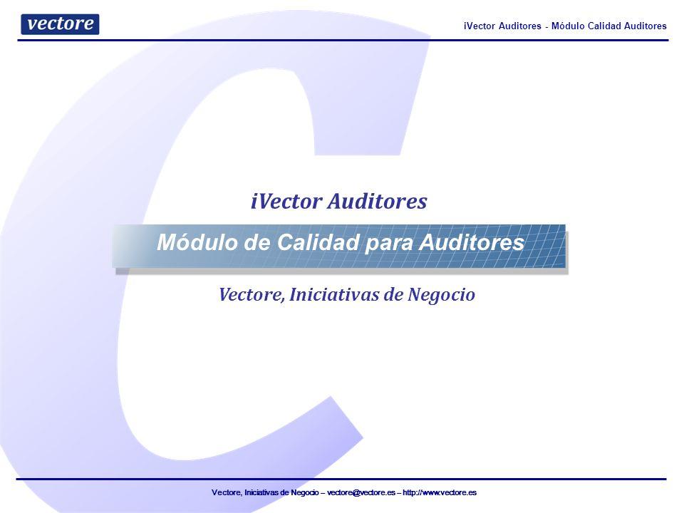 Módulo de Calidad para Auditores Vectore, Iniciativas de Negocio