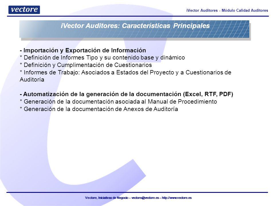 iVector Auditores: Características Principales