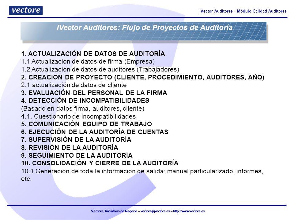 iVector Auditores: Flujo de Proyectos de Auditoría