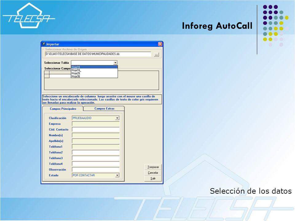 Inforeg AutoCall Selección de los datos