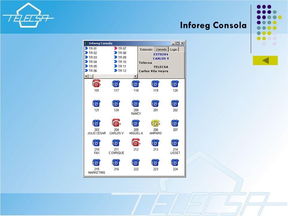 Inforeg Consola