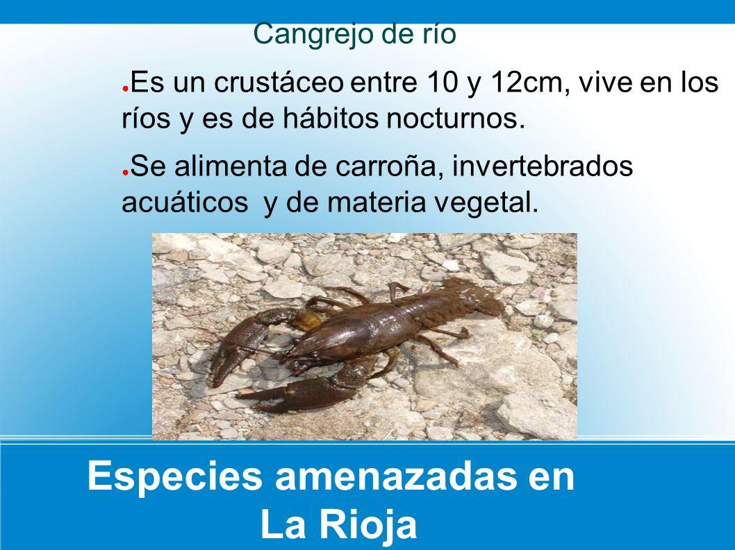 Especies amenazadas en La Rioja