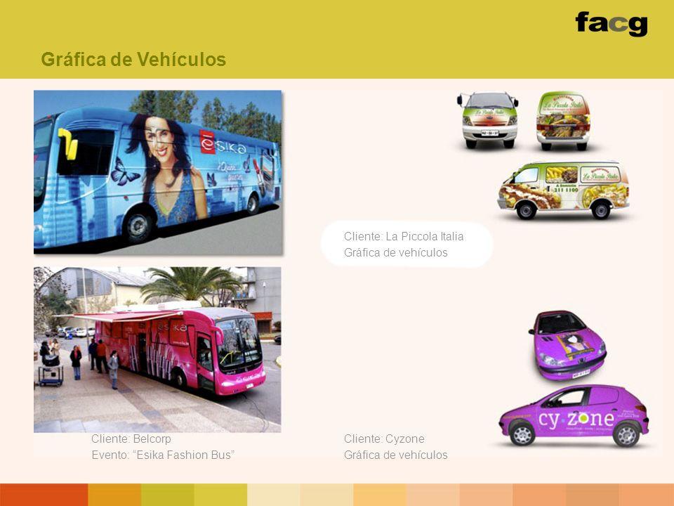 Gráfica de Vehículos Cliente: La Piccola Italia Gráfica de vehículos