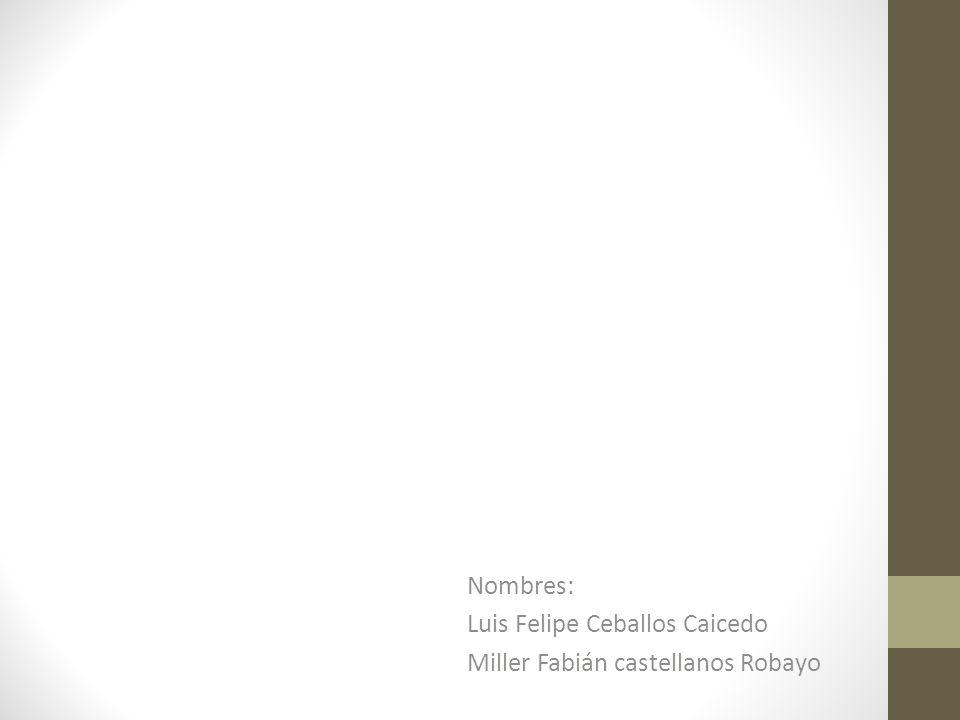 Nombres: Luis Felipe Ceballos Caicedo Miller Fabián castellanos Robayo
