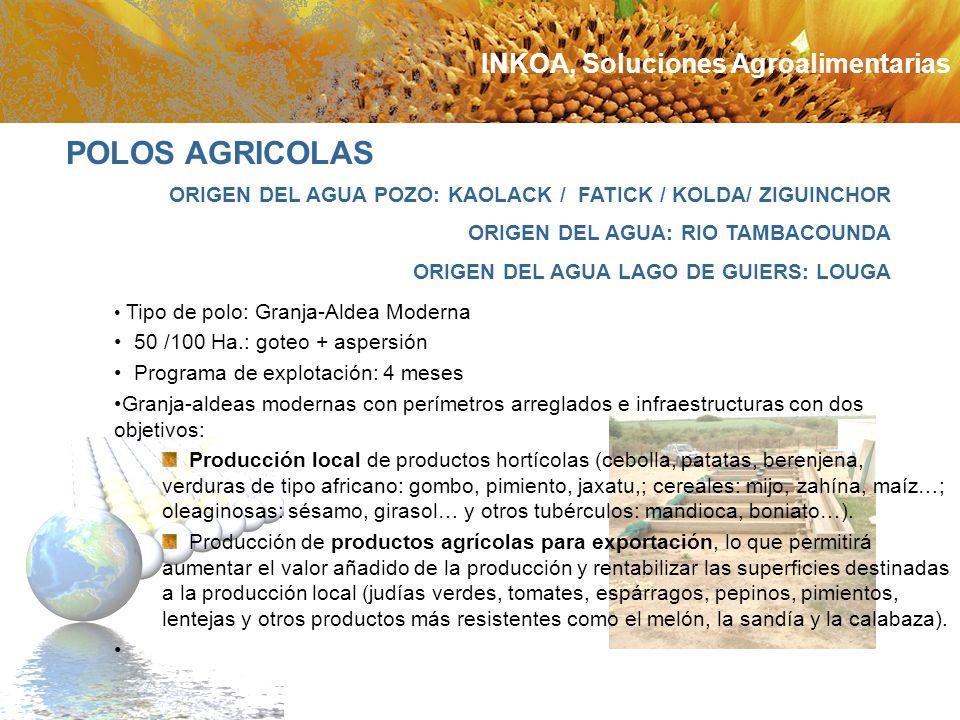 POLOS AGRICOLAS INKOA, Soluciones Agroalimentarias